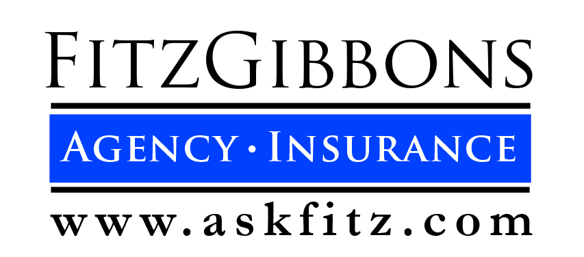 FitzGibbons Agency
